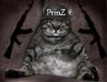 PrinZ_San9l